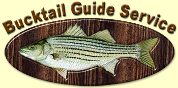 Lake Hartwell Fishing Guide Service